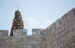 Christmas Tree on the Walls of Jerusalem