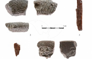 Special items uncovered: perforated piece, decorated objects, green stone spacers, shell and disc beads