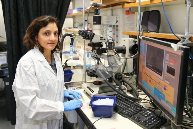 Hebrew University Researcher Dr. Maya Ben-Dolev