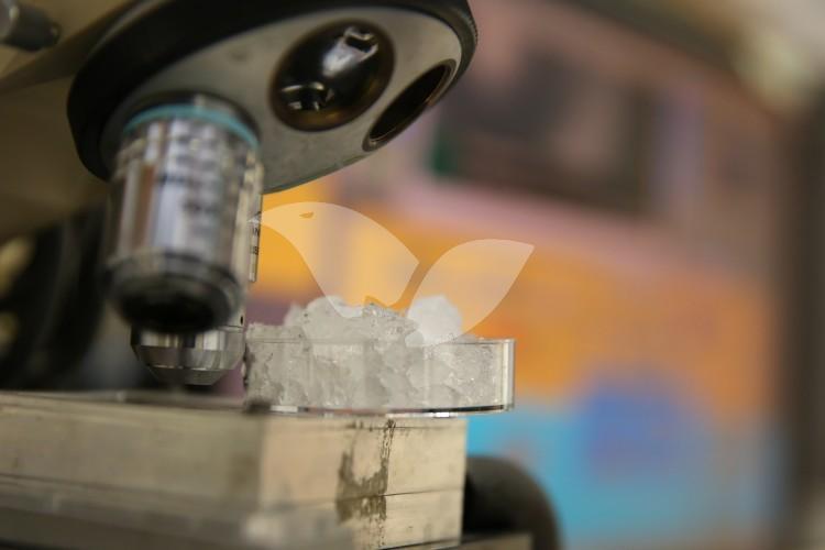 Hebrew University ice lab – Rehovot