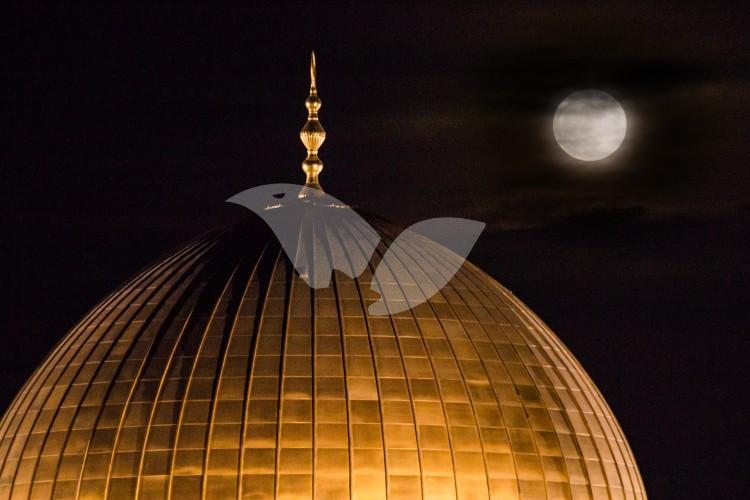 Full Moon Temple Mount