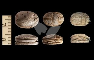 Scarabs from the Temple Mount
