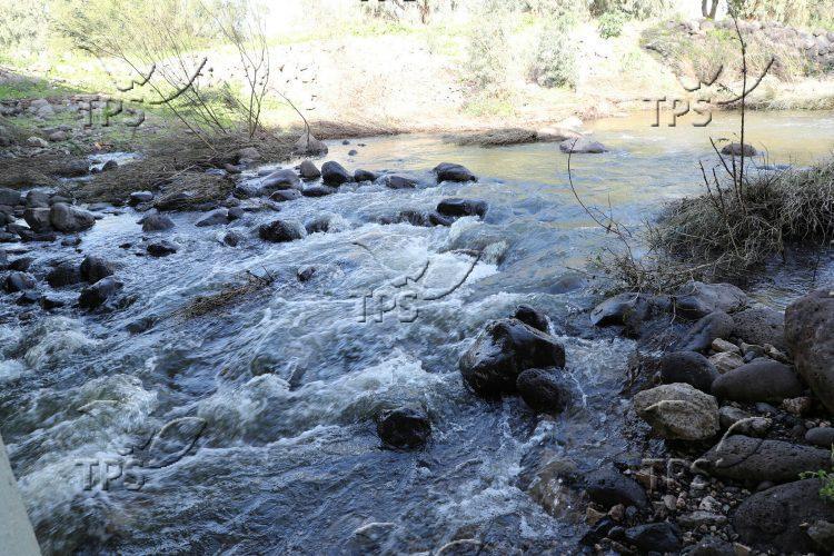 Streams flows towards the Kinneret