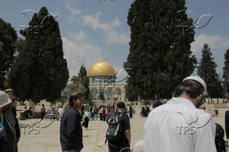 Jews accend the Temple Mount