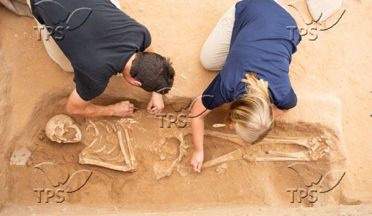 Excavation of the Philistine Cemetery at Ashkelon