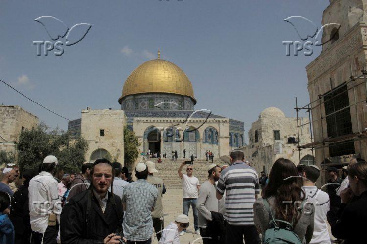 Jews ascend the Temple Mount