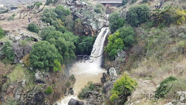 Saar Falls in the Golan Heights