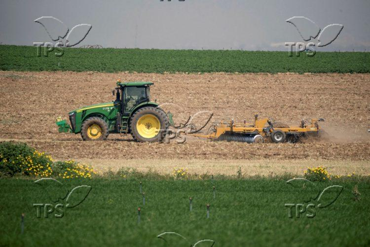 Tractor plows fields