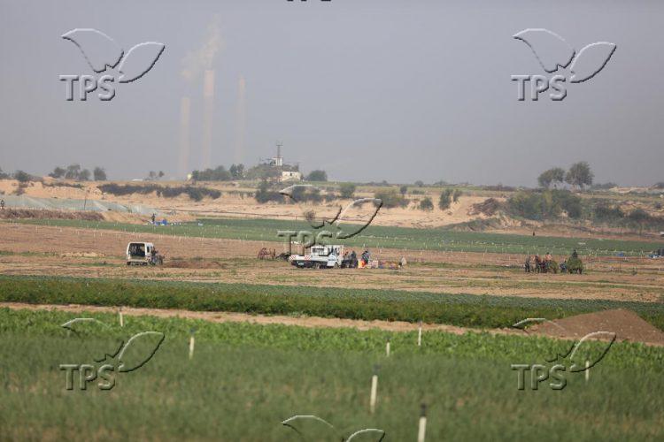 Farmers of Beit Lahiya in Gaza Strip