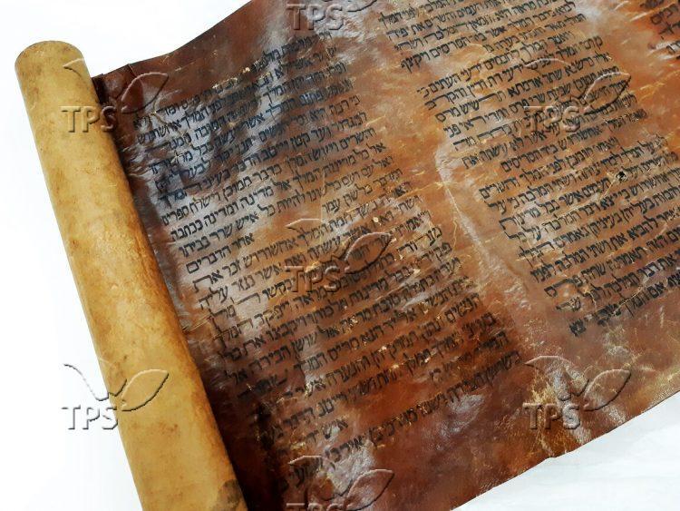 Recently arrived 15th century megilla – 3. Courtesy – National Library of Israel, Jerusalem (1)