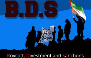 Infographic of the BDS movement